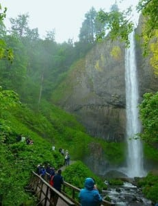 Multnomah Falls is a stop on a shore excursion from the S.S. Legacy.