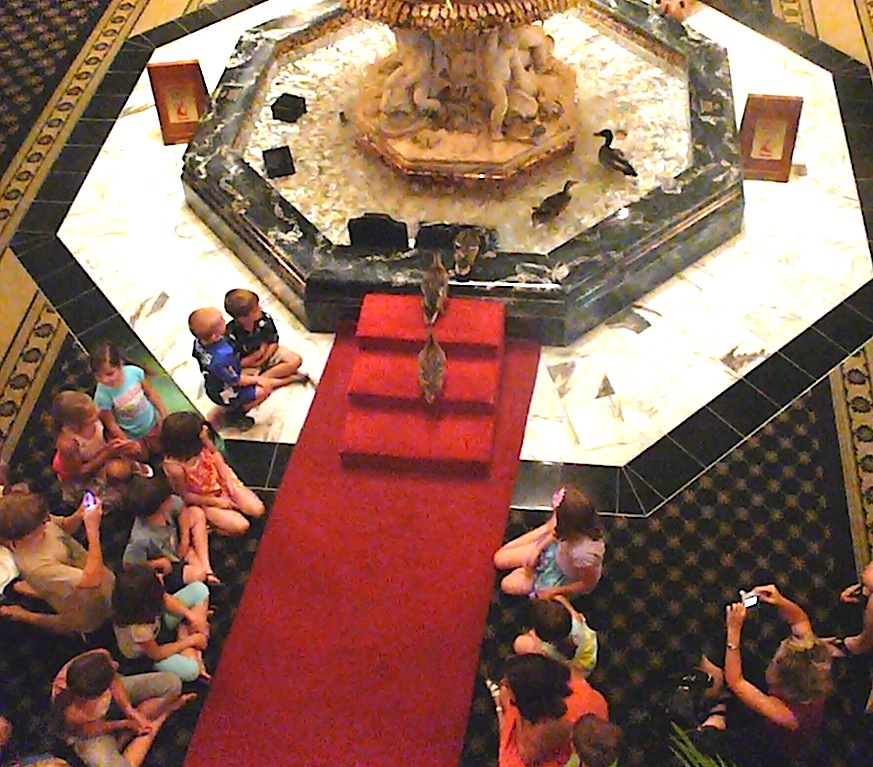 Peabody Hotel Duck March A Tradition Allthingscruise