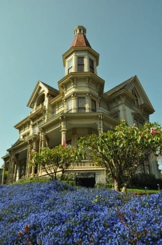 A hillside of bright lobelia fronts the mansion of George Flavel in Astoria
