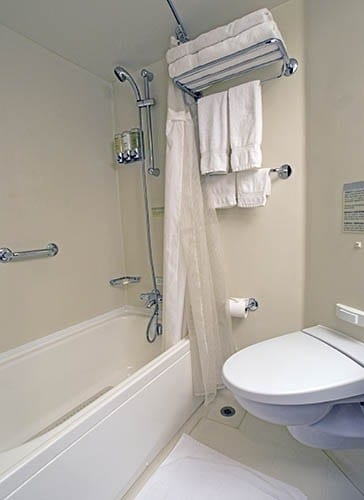 Verandah stateroom's bathroom on ms Eurodam with both shower and bath tub.