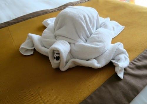 A towel turtle, a la Marius Stoian, towel sculptor