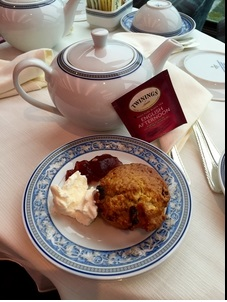 """A full """"Devonshire"""" tea is offered on the Riviera daily (also known as a cream tea)...with scones, clotted cream and jam"""