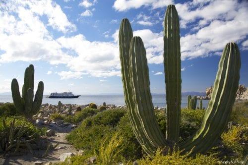 Safari Endeavour Photo courtesy of Un-Cruise Adventures