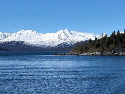 Day Two: Glorious Glacier Bay