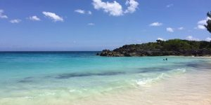 What to Do the Next Time You Visit Bermuda