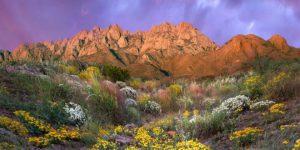Travel Guides Free … Utah