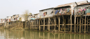 River houses are built to withstand huge changes in water levels between dry and wet seasons