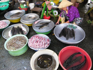For sale at market in Vietnam