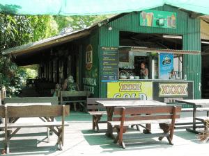 The Lion's Den bush stop