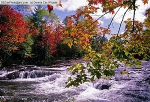 Michigan: Autumn leaves at Bond Falls on Ontanagon River in Upper Peninsula