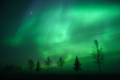the northern lights rugged terrain panning for gold fly fishing. Black Bedroom Furniture Sets. Home Design Ideas