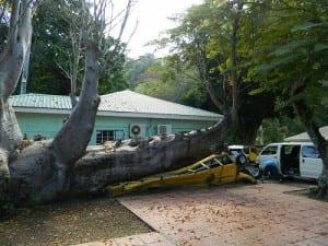Damage from Hurricane David