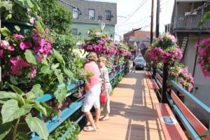 Flowers brighten this footbridge-- crossing the Megunticook River in Camden