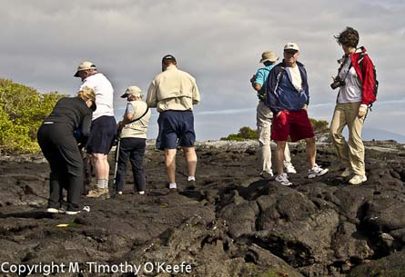 Tips For Packing For A Cruise To The Galapagos Islands