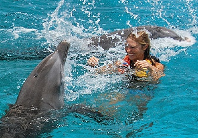 Dolphin exursion- Image courtesy of Shore Excursions Group