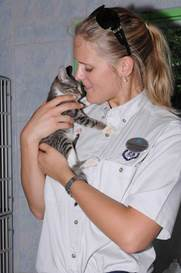 A Crystal crew volunteer comforts a shelter kitten during a You Care, We Care excursion. (Photo courtesy of Crystal Cruises)