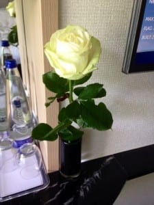 I was presented this lovely rose as I checked in